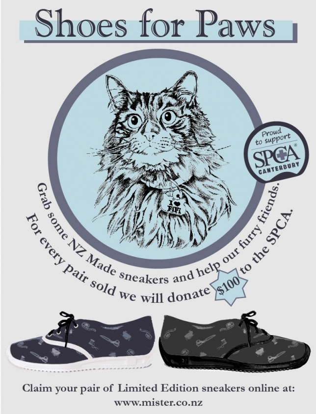 Shoes for Paws